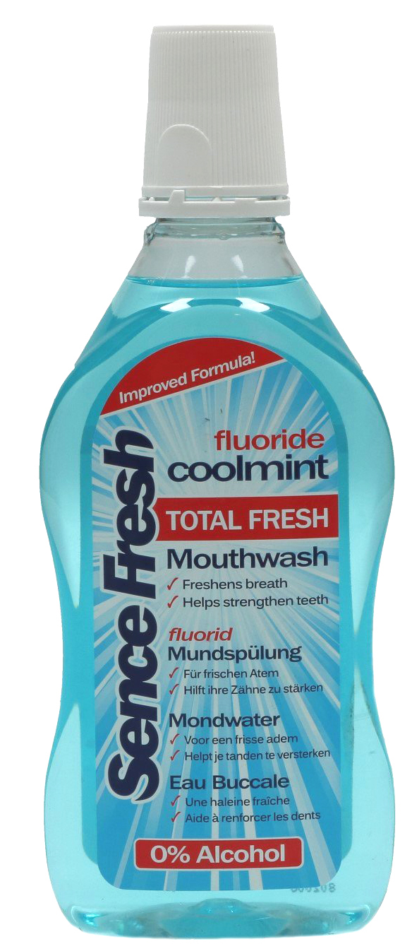 01715 - Mundwasser 500 ml - Coolmint