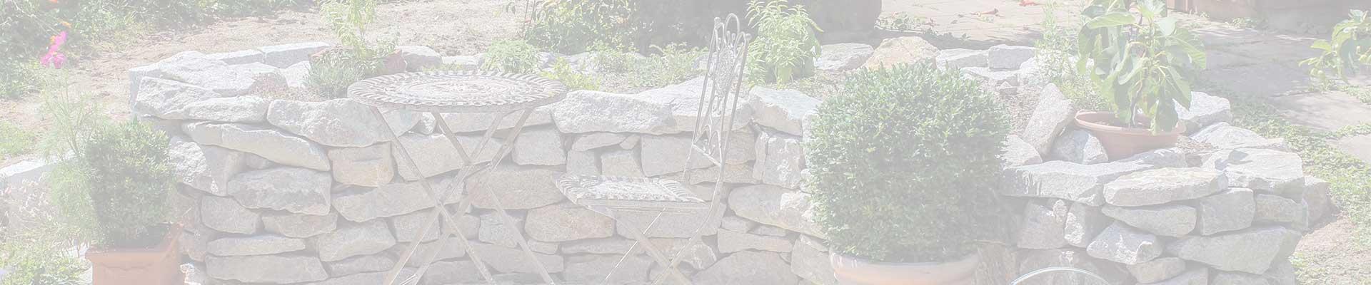 Slider_Background_Pflanzen_und_Gartenpflege