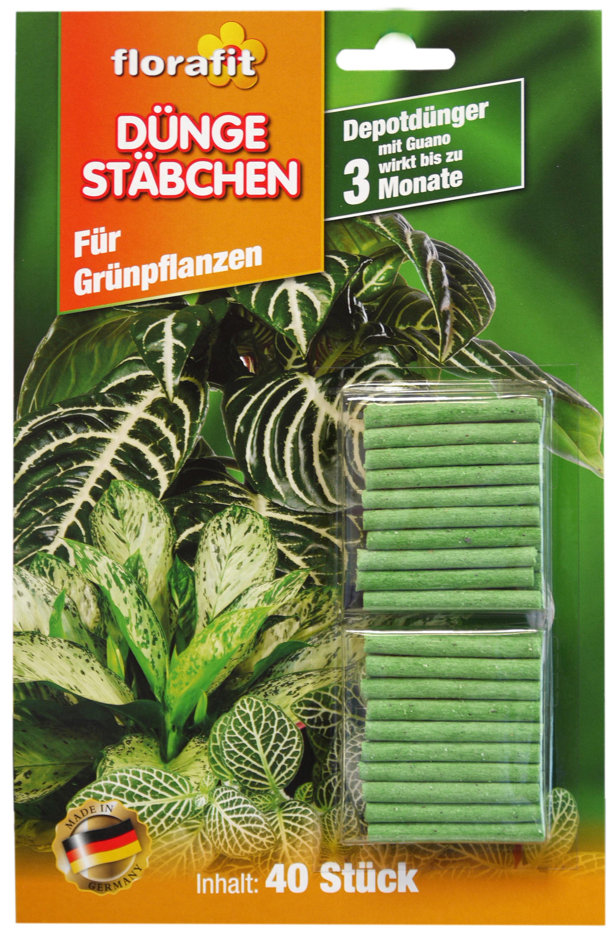 02260 - florafit Düngestäbchen 40er -für Grünpflanzen -